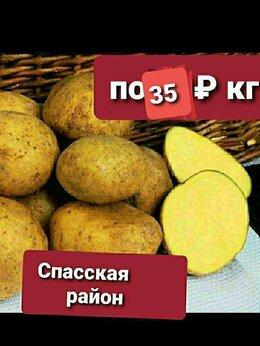Продукты - Картошка местная , 0