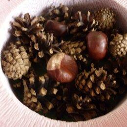 Рукоделие, поделки и сопутствующие товары - Шишки воронежской сосны, 0