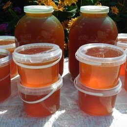 Продукты - Мед цветочный натуральный луговой с личной пасеки, 0