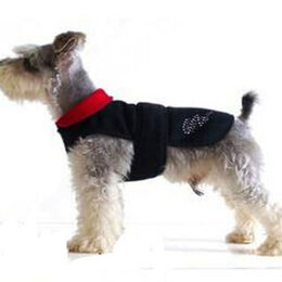Одежда и обувь - Попона для маленьких и средних собак, 0