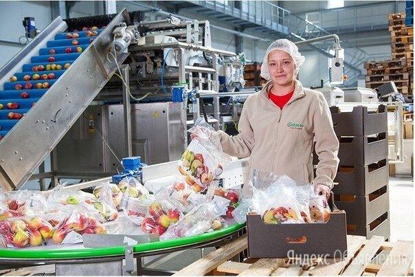 Сортировщица на склад г.Смоленск - Работники склада, фото 0