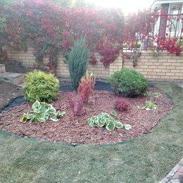 Бытовые услуги - Благоустройство,озеленение,уход сада, 0