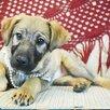 Ласковая, трепетная, Любвеобильная, Щенуля , ищет Добрую Семью по цене даром - Собаки, фото 2