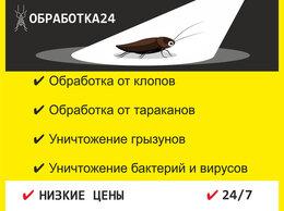 Бытовые услуги - Уничтожение клопов, тараканов, грызунов, 0