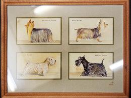 Картины, постеры, гобелены, панно - Картина акварелью Собаки - болонки, 0