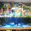 Аквасалон Водный Мир по цене 4500000₽ - Торговля, фото 0