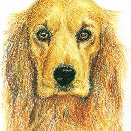 """Картины, постеры, гобелены, панно - Рисунок """"Собака"""" картина масляная пастель бумага 28,5х20,5 см Гаврилин Е.Г., 0"""