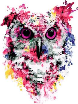 Раскраски и роспись - Картины по номерам Paintboy Арт-сова, 0