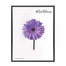 Фоторамки - Фоторамка (рамка для фотографий) 40х50 см пластик, багет 13 мм, «Maria», черная,, 0