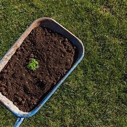 Субстраты, грунты, мульча - Плодородная земля, 0