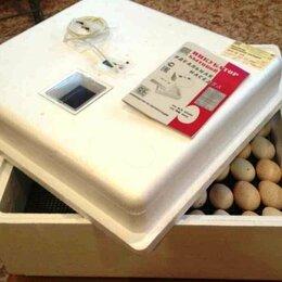 Прочие товары для животных - Инкубатор автоматический для яиц куриных гусиных утиных перепелиных, 0