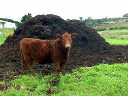 Субстраты, грунты, мульча - Навоз Коровий, 0