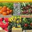 Семена Сортовых ПЕРЦЕВ для выращивания в ДОМАШНИХ условиях/БАЛКОН/Квартира по цене 50₽ - Семена, фото 7