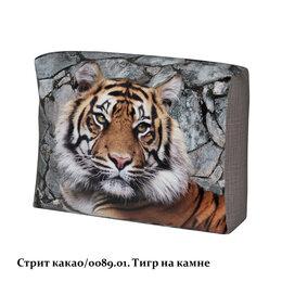 Наука и образование - Стрит грей/тигр на камне чехол подушки, 0