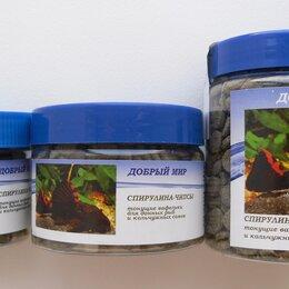 Корма  - Спирулина-чипсы для кольчужных сомов и донных рыб, 0