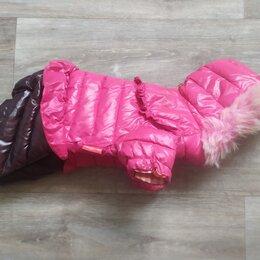 Одежда и обувь - Зимний костюм для собаки ( для ДЕВОЧКИ) , 0