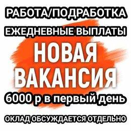 Администратор - Временный директор (без опыта работы), 6000 р за…, 0