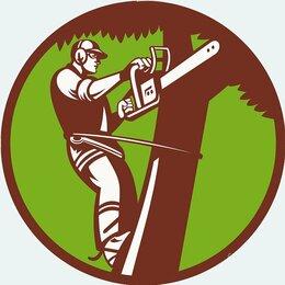 Бытовые услуги - Спил-обрезка деревьев., 0
