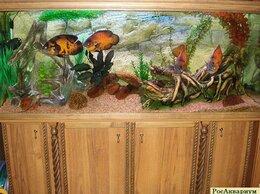 Аквариумы, террариумы, тумбы - Эксклюзивный аквариум недорого, 0