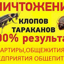Бытовые услуги - Уничтожение клопов тараканов СПб и ЛО . Средства., 0