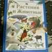 Детская литература по цене 350₽ - Детская литература, фото 0