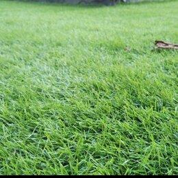 Искусственные растения - Искусственный газон, 0