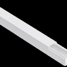Кабеленесущие системы - Кабель-канал магистральный 16х16 ЭЛЕКОР (кр.2м) IEK, 0