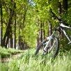 Курсы езды на велосипеде: индивидуально, качественно, доступно    по цене 2000₽ - Сертификаты, курсы, мастер-классы, фото 6
