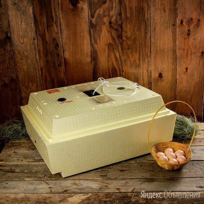 Домашний инкубатор для цыплят Несушка 220 В 36 яиц автомат переворот по цене 6600₽ - Товары для сельскохозяйственных животных, фото 0