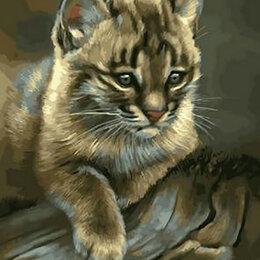 Раскраски и роспись - Картина по номерам на холсте - котик, 0
