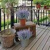 Искусственная лаванда по цене 200₽ - Цветы, букеты, композиции, фото 6