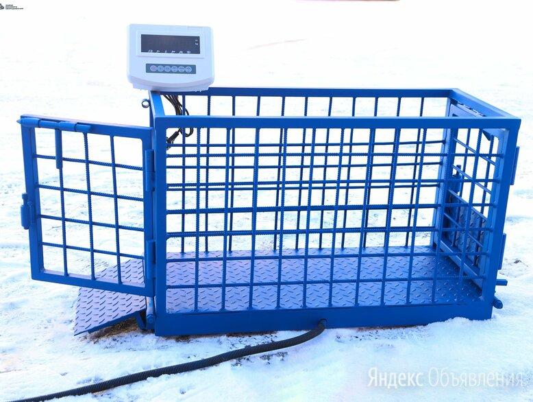 Весы для животных. Напольные весы для КРС ВП-С 500 кг по цене 66500₽ - Прочие товары для животных, фото 0