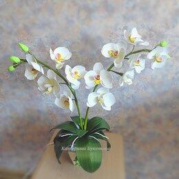 Ночники и декоративные светильники - Светильник орхидея, 0