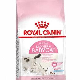 Корма  - Бэби кэт 10 кг Mother & Babycat royal canin, 0