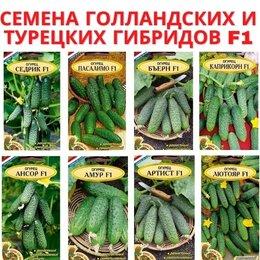 Семена - Семена. Голландские семена. Скидки и подарки!, 0