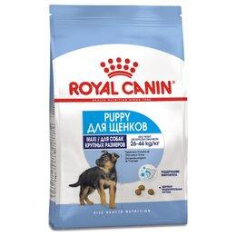 Корма  - Сухой корм Royal Canin Maxi Puppy 3 кг, 0