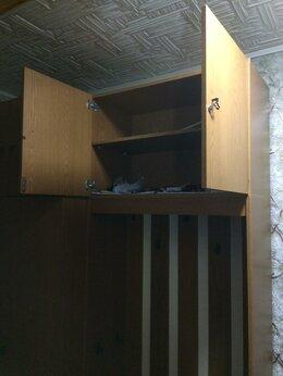 Шкафы, стенки, гарнитуры - Шкаф прихожая, 0