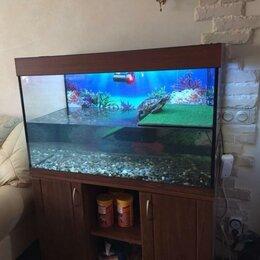 Аквариумы, террариумы, тумбы - Террарум 300л для водной черепахи. Гарантия 5 лет, 0