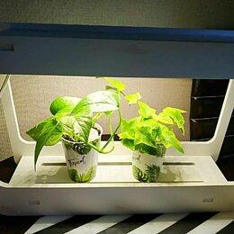 Аксессуары и средства для ухода за растениями - Светильник мини-сад для растений Uniel, 0