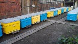 Сельскохозяйственные животные -  Улья, пчелоинвентарь., 0