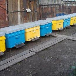Сельскохозяйственные животные и птицы -  Улья, пчелоинвентарь., 0