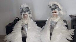 Карнавальные и театральные костюмы - Костюмы для шоу балета , 0