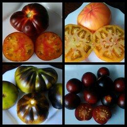Семена - Семена редких сортов томатов, 0