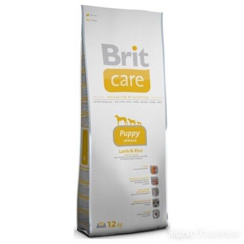 Сухой корм Brit Care Puppy All Breed Lamb Rice 1 кг по цене 682₽ - Корма , фото 0