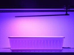 Аксессуары и средства для ухода за растениями - Фито лампа на прищепке для досвечивания цветов и…, 0