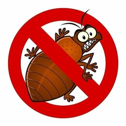 Бытовые услуги - Уничтожение тараканов, клопов и других, 0