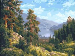 Картины, постеры, гобелены, панно - Картина по номерам С.Басов 40*50, 0