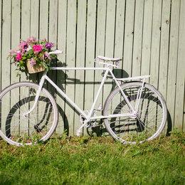 Аренда транспорта и товаров - Аренда белого ретро велосипеда, 0