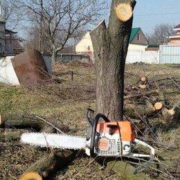 Архитектура, строительство и ремонт - Спил деревьев, покос травы триммером, демонтаж…, 0