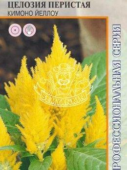 Рассада, саженцы, кустарники, деревья - Целозия Кимоно Йеллоу перистая (Агрос), 0